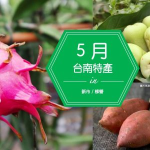 台南的特產 | 5月低卡果物瘦身吃,為夏季穿無袖做準備