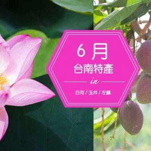 臺南特產 | 芒果季又來了!台南山線的這3項特產也不能錯過!