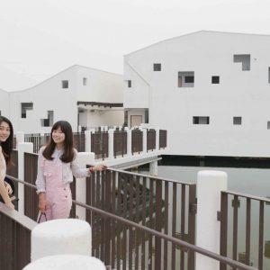 台江國家公園 │ 安平附近景點必遊!拍美照+認識生態!